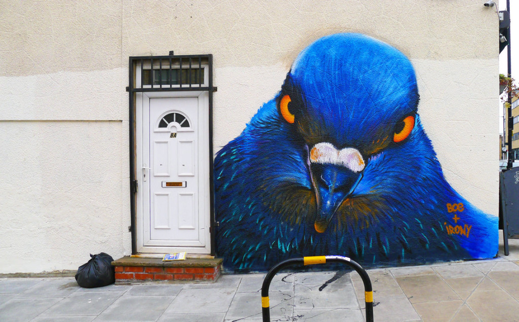 broadway_market_pigeon_by_whoam_irony-d5yzc0q