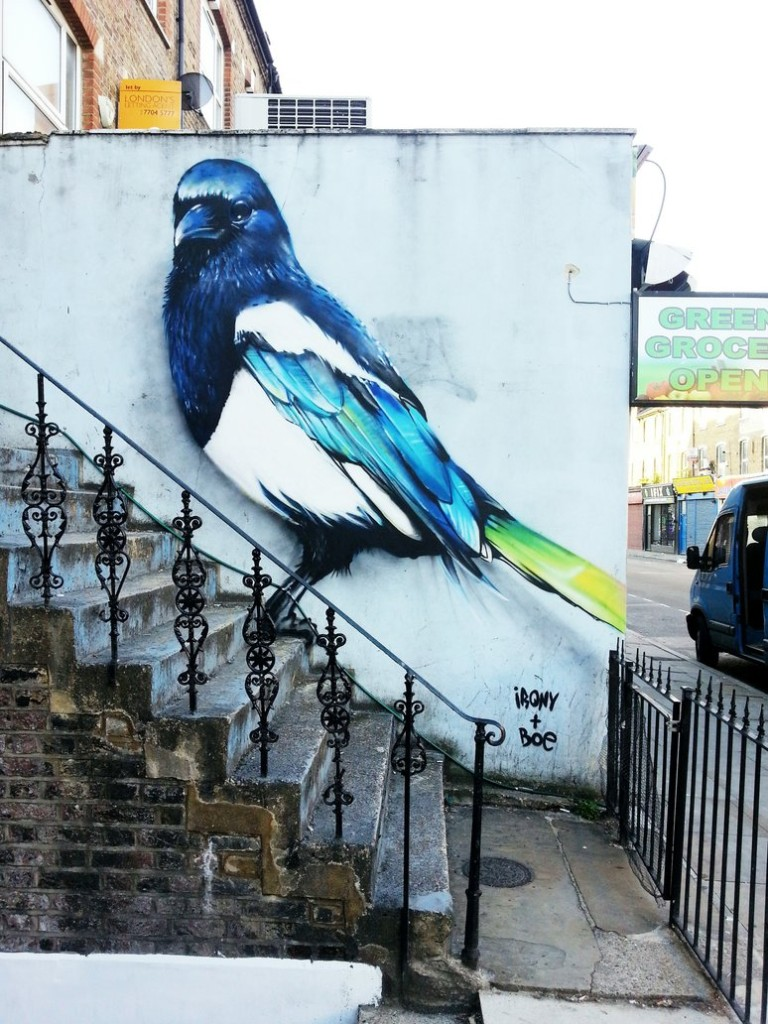 magpie_by_whoam_irony-d6giyeo