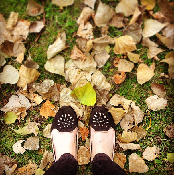 Autumn in London, Photo by Stephanie Sadler, Little Observationist