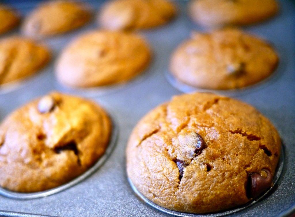 Recipe Pumpkin Chocolate Chip Muffins on Little Observationist