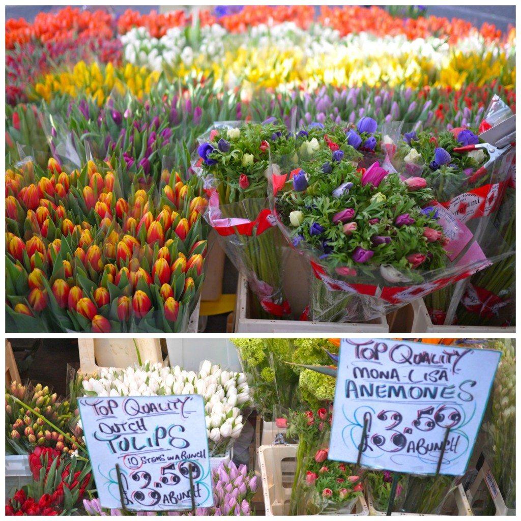 Columbia Road Flower Market, Stephanie Sadler, Little Observationist