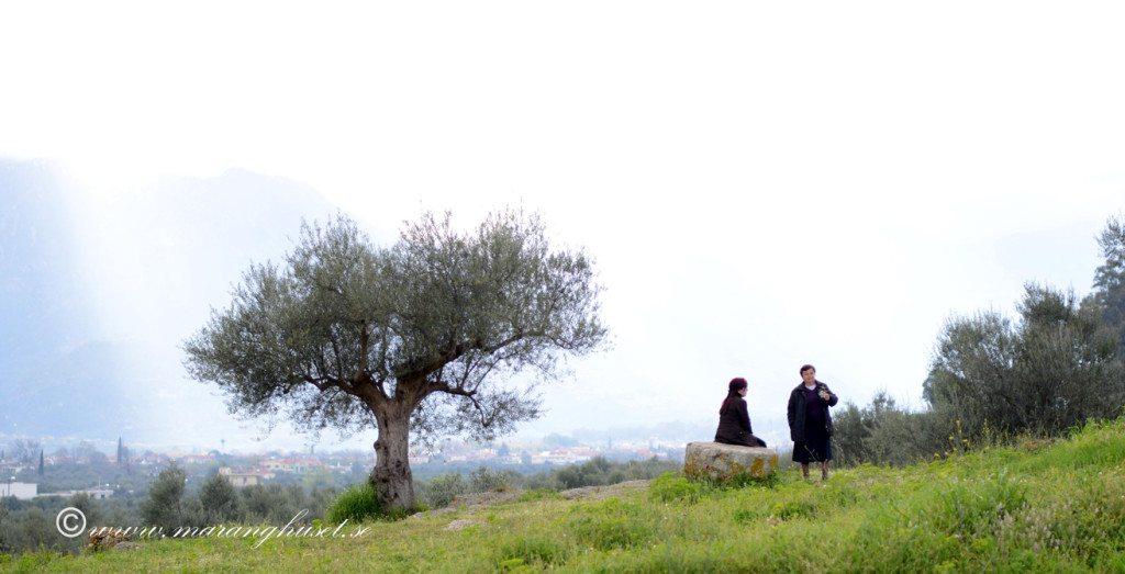 Olive Threes 5_redigerad-8