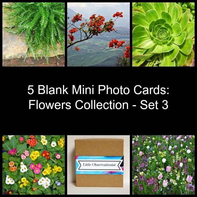 Little Observationist Mini Photo Cards - Flowers Collection - Set 3