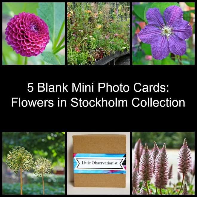 Little Observationist Mini Photo Cards - Flowers in Stockholm Collection