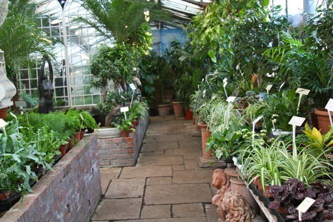 Little Observationist - World's End Nurseries, London