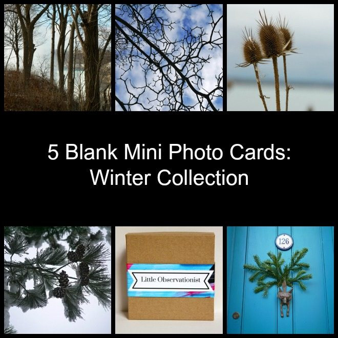 Little Observationist Mini Photo Cards - Winter Collection