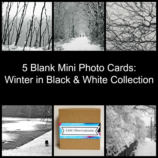 Little Observationist Mini Photo Cards - Winter in Black and White Collection