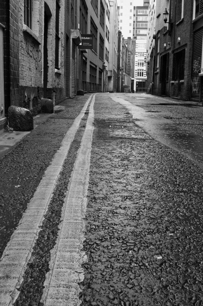Stephanie Sadler, Little Observationist - London