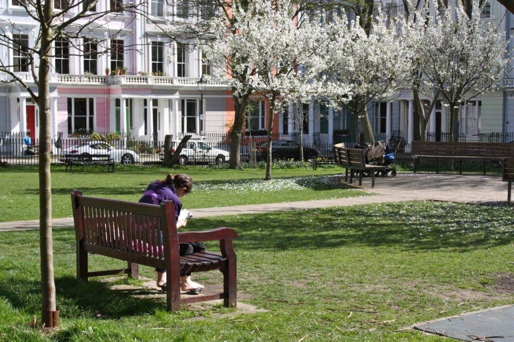 chalcot square, little observationist