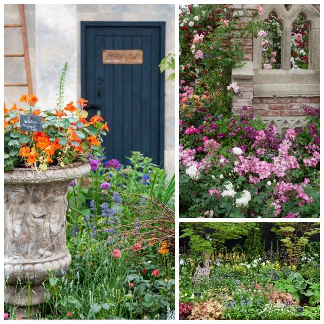 Chelsea Flower Show 2015 by Stephanie Sadler, Little Observationist 20.jpg