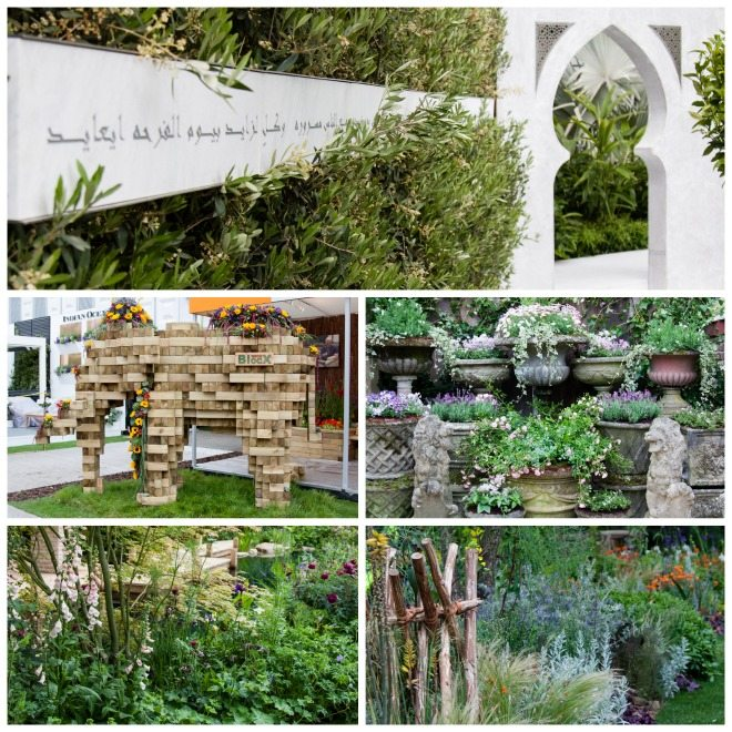 Chelsea Flower Show 2015 by Stephanie Sadler, Little Observationist7