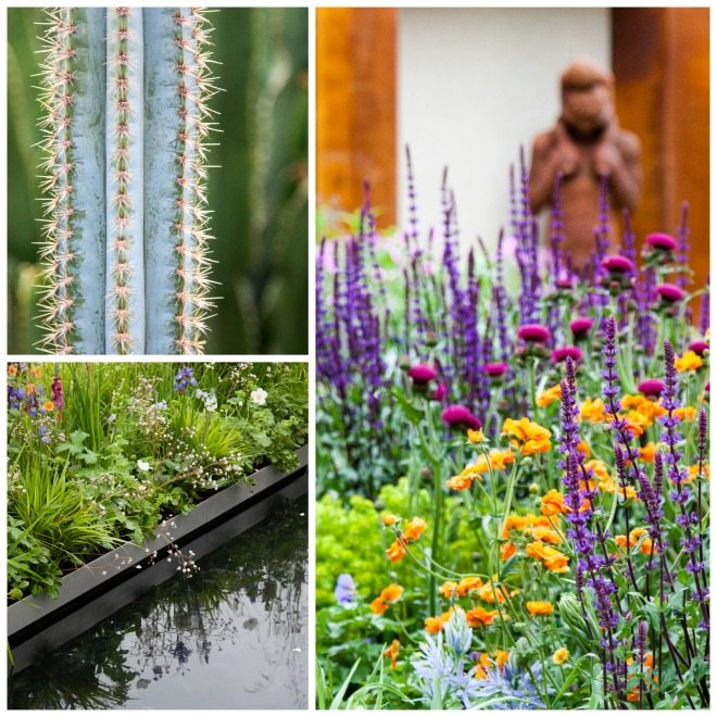 Chelsea Flower Show 2015 by Stephanie Sadler, Little Observationsit1.jpg