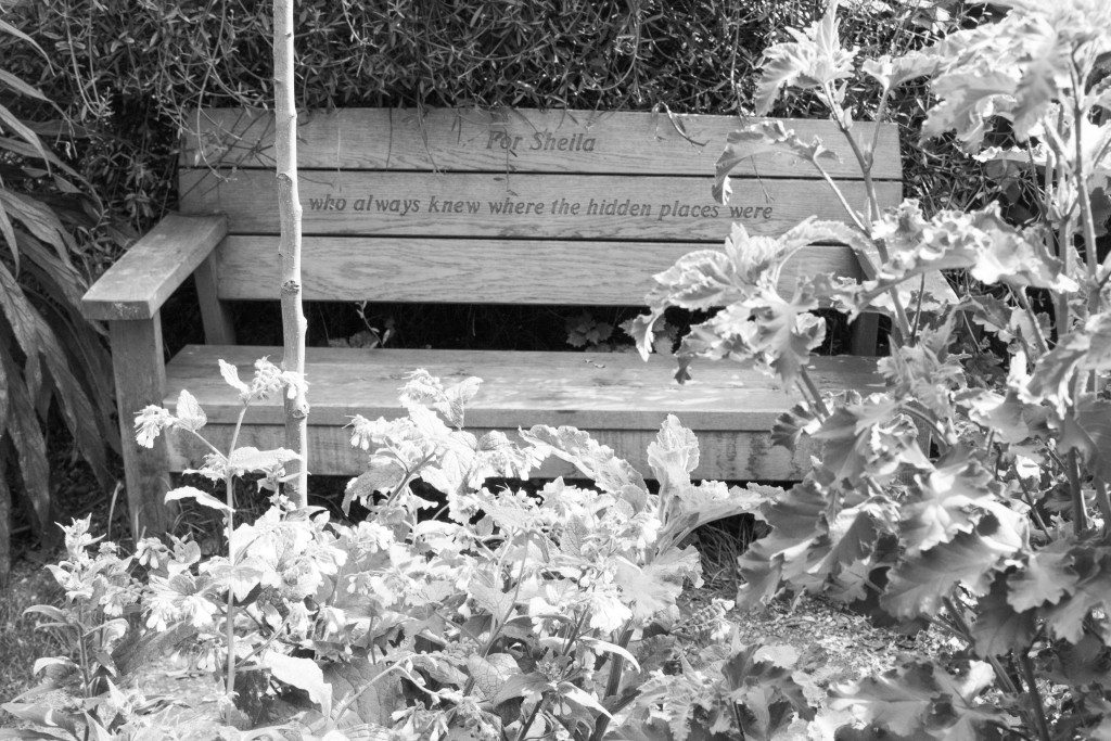 Phoenix Gardens, London by Stephanie Sadler, Little Observationist