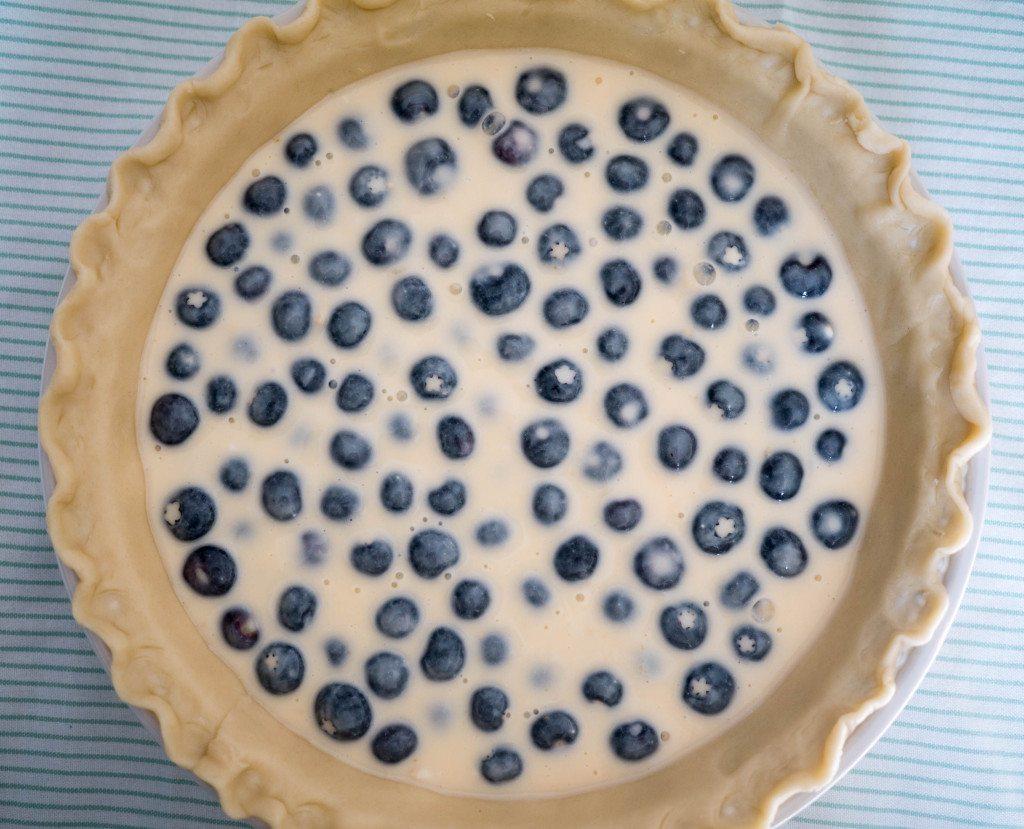 Blueberry Custard Pie, Little Observationist