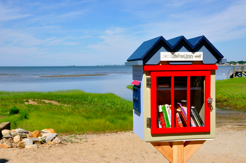 Little Free Library Interview - Rick Brooks