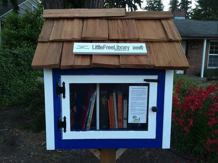 Little Free Library Interview Rick Brooks