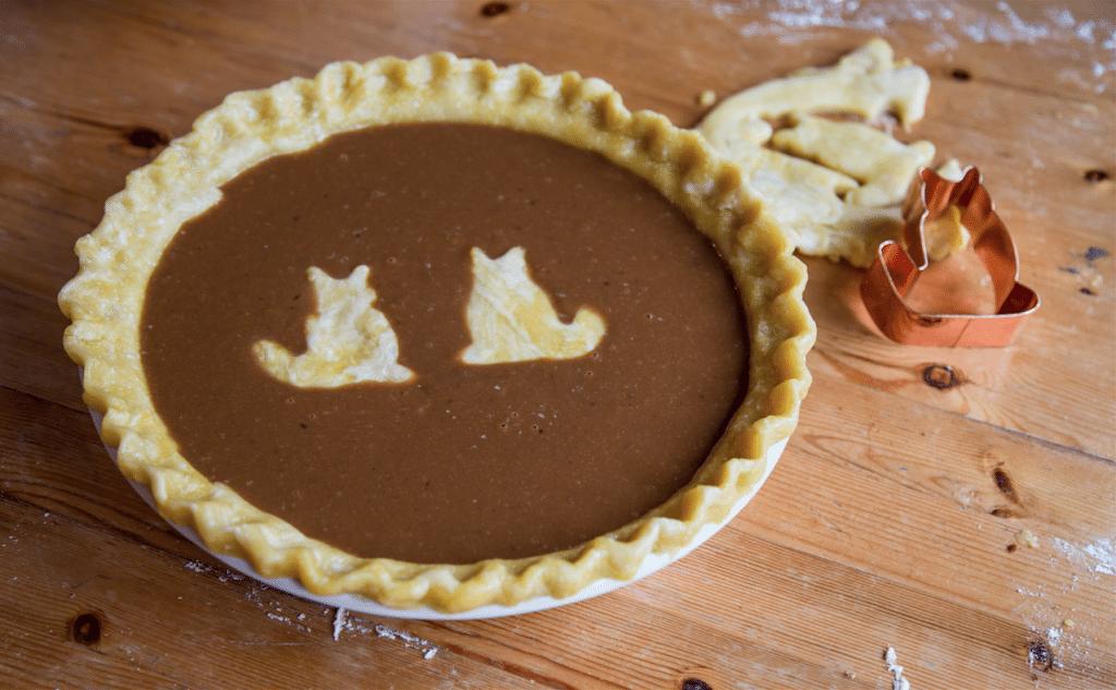 Pumpkin Pie by Stephanie Sadler, Little Observationist