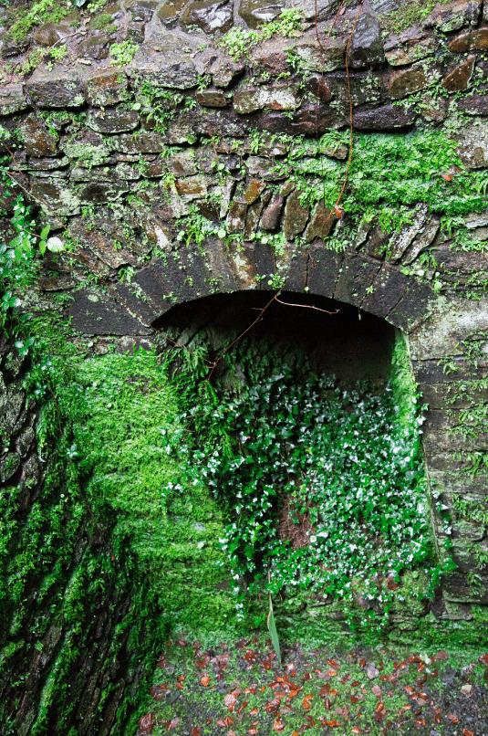 Dartmoor National Park, by Stephanie Sadler - Little Observationist