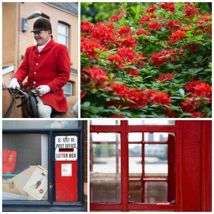 Red Photography by Stephanie Sadler, Little Observationist