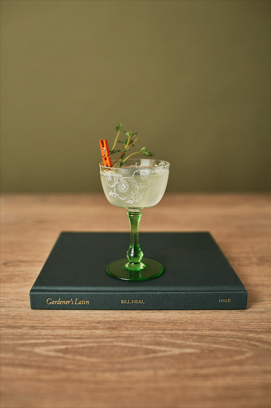 An Interview with Ben Branson of Seedlip on Little Observationist
