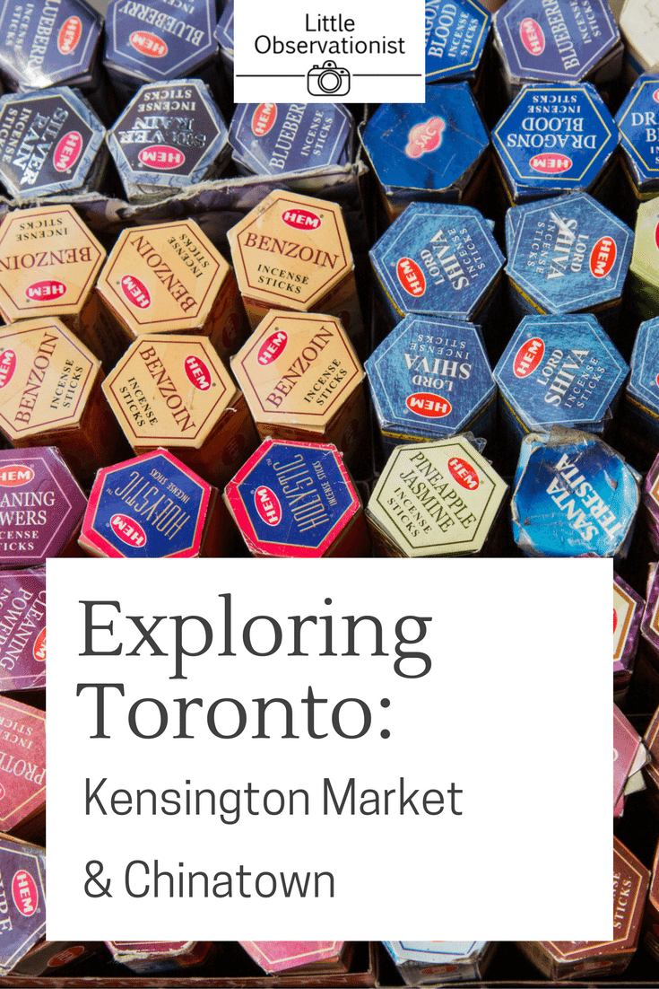 Exploring Toronto by Stephanie Sadler, Little Observationist