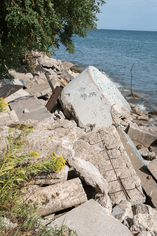 Toronto Islands by Stephanie Sadler, Little Observationist